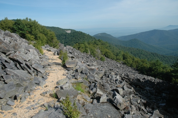 a rocky mountain top.