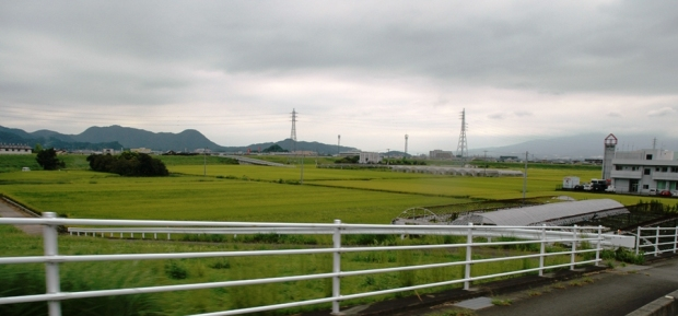 Past the rice fields.